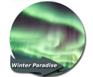 Winter Paradise, Winter Photography Workshop